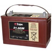 Акумулатори Trojan Deep-Cycle Agm TROJAN DEEP-CYCLE AGM 12V 100AH                 745.00 ЛВ.